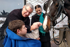 Interacting with our local Amish community and their horses!